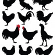 Roosters and hens — Stock Vector #47789933