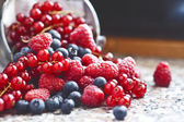 Redcurrant, blueberries and raspberries — Stock Photo