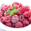 Frozen Berry — Stock Photo