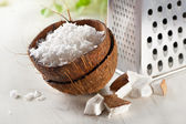 Grated coconut with grater — Stock Photo