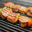 Skewers Grilling — Stock Photo
