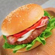 Hamburger — Stock Photo #30102753