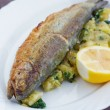 Trout on Potato — Stockfoto