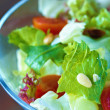 Healthy Salad — Stock Photo #30131121