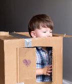 Boy inside the paper box — Stock fotografie
