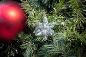 Chistmas decoration — Stockfoto