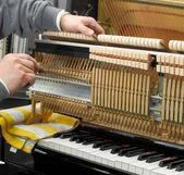 Parsed piano — Stock Photo