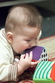 Boy is tasting the toy — Stock fotografie