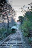 Railway between of trees — Stock Photo