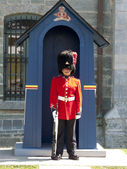 .Sentry of the Grenadier Guards — Stock Photo