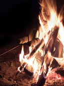 Marshmallow in campfire — Stock Photo