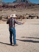 Cowboy lassoing — Stock Photo