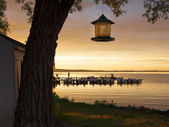 Bird feeder with boats in the background — Stock Photo