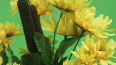Yellow flowers — Stock Video