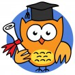 Graduated academic owl — Stock Vector