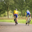 Two cyclists on the road from behind — Stock Photo