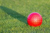 Red golf ball on grass — Stock Photo
