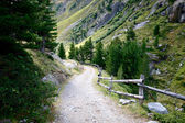 Rocky trail leading to valley surrounded by forests and high mountains in Swiss Alps, Switzerland. — Stock Photo