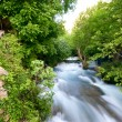 Khurmal Forrest and river rapids in mountains of autonomous Kurdistan Iraq — Stock Photo