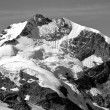 Piz Bernina black and white photo, Swiss Alps — Stock Photo