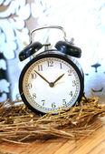Dekorativa väckarklocka — Stockfoto
