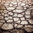 Cracked Soil Texture — Stock Photo