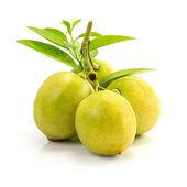 Ovoce čerstvé citronové — Stock fotografie