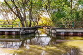 Canal of waste water — Stock Photo