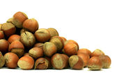 A lot of hazel nuts over white — Stock Photo