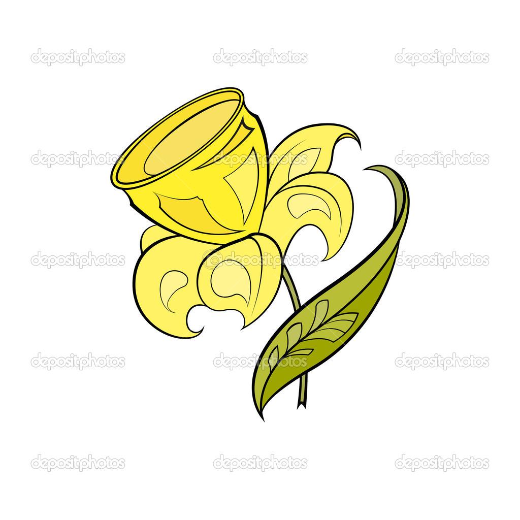 Giallo narciso stilizzato vettoriali stock krystykat for Narciso giallo