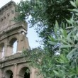Roman Colosseum in Rome Italy — Stock Video #30409021