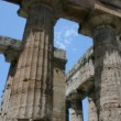 Stock Video: Collumns of an Ancient Greek Temple