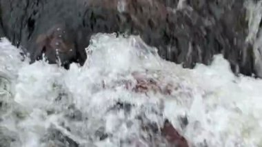 Roiling River Water — Stock Video