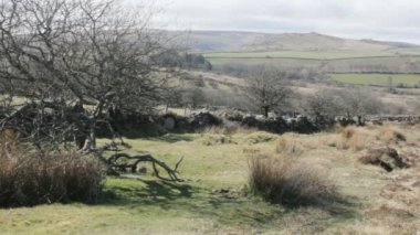 Fields and Hills in Dartmoor Cornwall England — Stockvideo