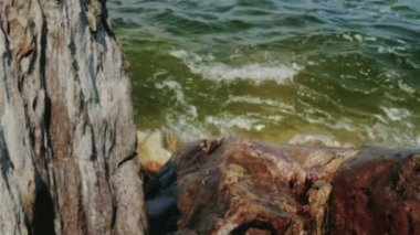Green Sea Water Splashes over Brown Coast Rock — Stock Video