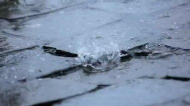Heavy Rain Falls on Pavement Road — Stock Video