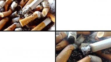 Anti-smoking video, collage — Stock Video