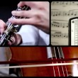 Music for oboe and cello, montage — Stock Video