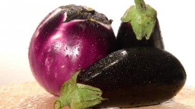 Eggplants — Stok video