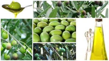 Kolaż oliwy z oliwek — Wideo stockowe