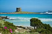 Italië. Sardinië. Stintino zeegezicht. — Stockfoto