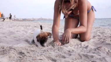 Jack russel and beautiful girl on vacation — Stock Video