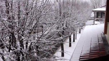 Karlı gün — Stok video