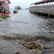 Thailand, sea pollution — Stock Video