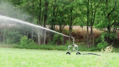 Agriculture, automatic irrigation — Stock Video