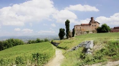 Piedmont, langhe — Stock Video