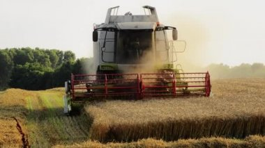 Agriculture, combine harvester — Stockvideo