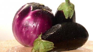 Eggplants — Stock Video