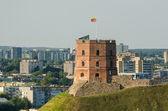 Lithuania. Vilnius Upper Castle in the summer — Foto Stock