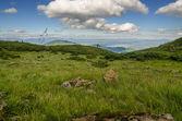 Carpathian Mountains next to Dragobrat, Ukraine — Foto de Stock
